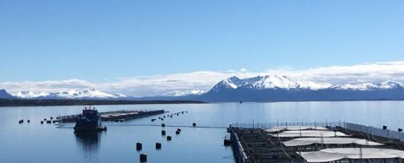 - Relevos - Puerto Montt, Chile.